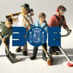 boe-ReglamentoSS